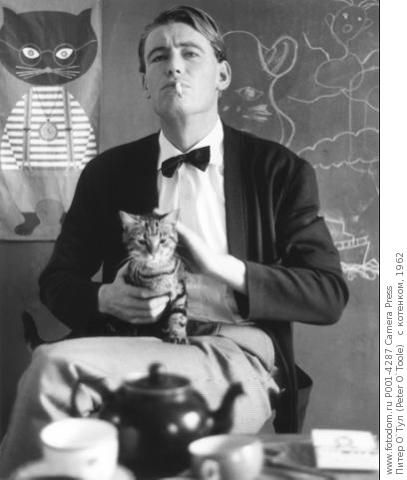 Peter O'Toole and two cats...Love the cat in the background.