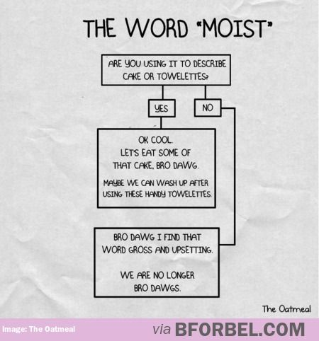 How To Use The Word Moist Just for shits and giggles Pinterest - flow chart word