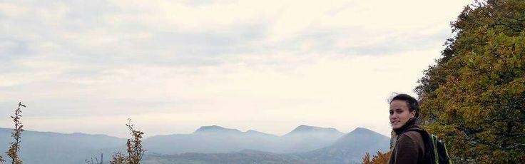 Comps (col du pertuis-chapelle de saint Maurice), vue sur Roche Colombe, forêt de Saoû, les Trois Bec, (ici de gauche à droite) Couspeau, Angèle, Miélandre, Roc !