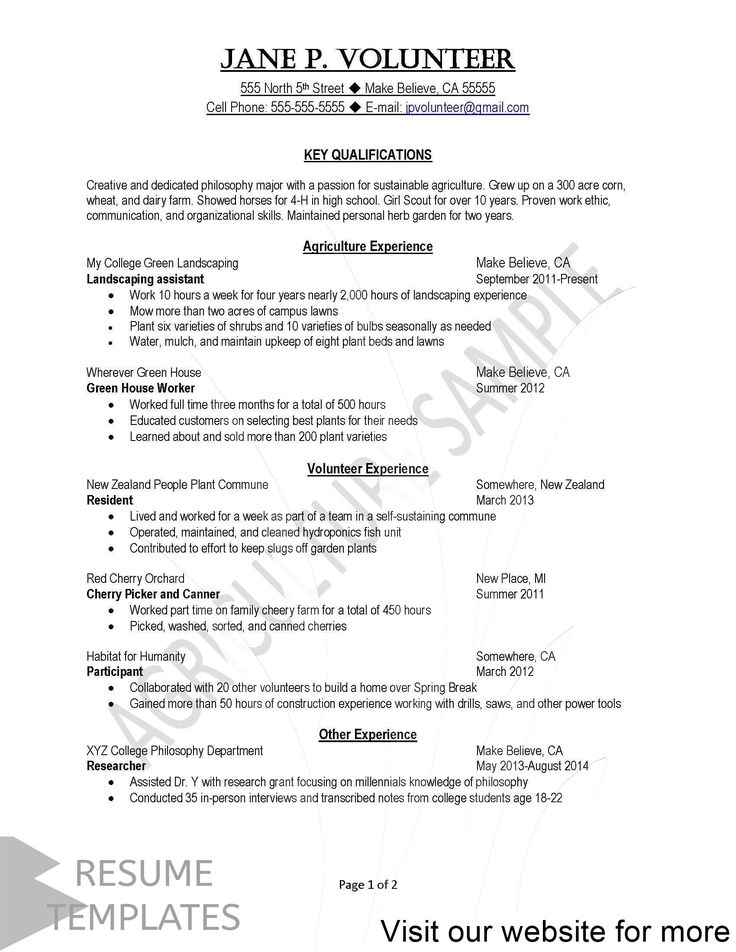 resume template doc download free Professional in 2020