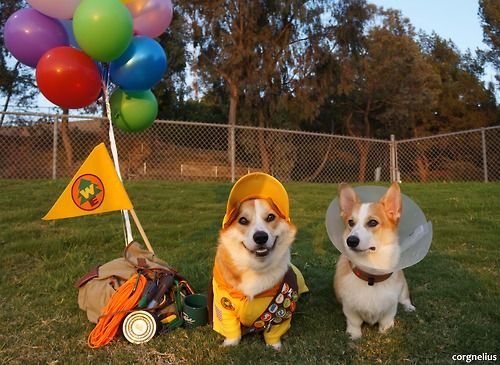 I entered the boys in a halloween costume contest. if their costumes are UP to your standards, please vote for them here! They're on p...