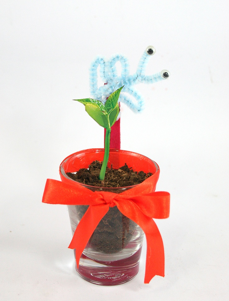 How to Make Plant Pots with Shot Glasses via www.wikiHow.com