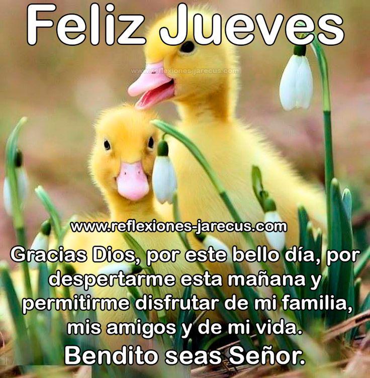 Feliz Jueves, gracias Dios, por este nuevo día
