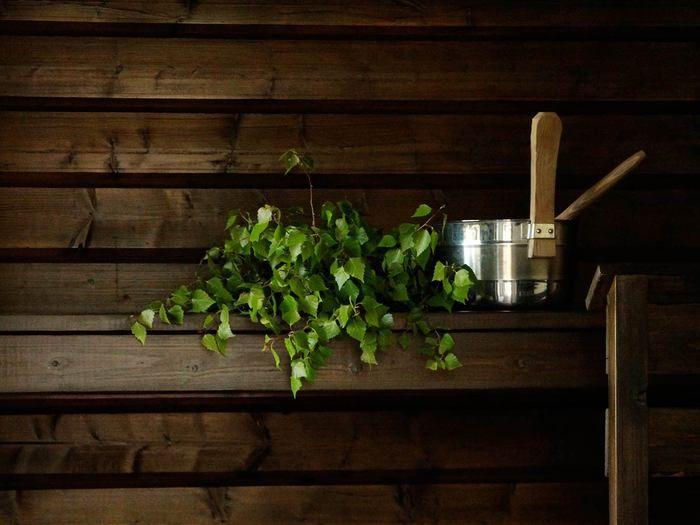 domargard-sauna