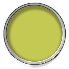 Dulux Feature Wall Matt Emulsion Paint Tester Pot Luscious Lime 50ml at wilko.com