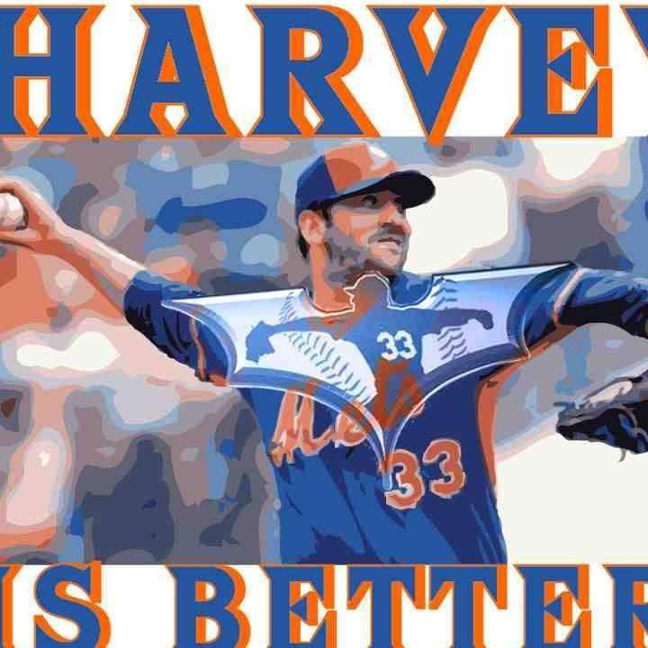 73 besten I LOVE MY METS Bilder auf Pinterest | New york mets, Mets ...