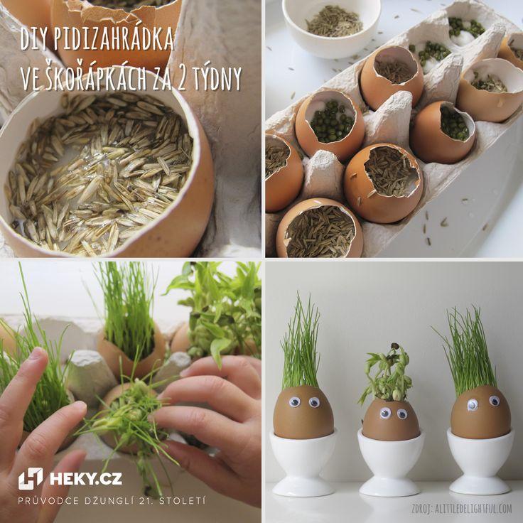 DIY minizahrádka: Vypěstujte si pažitku ve skořápkách