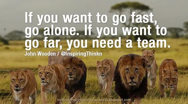 If you want to go fast, go alone. If you want to go far, you need a team. John Wooden #Leadership