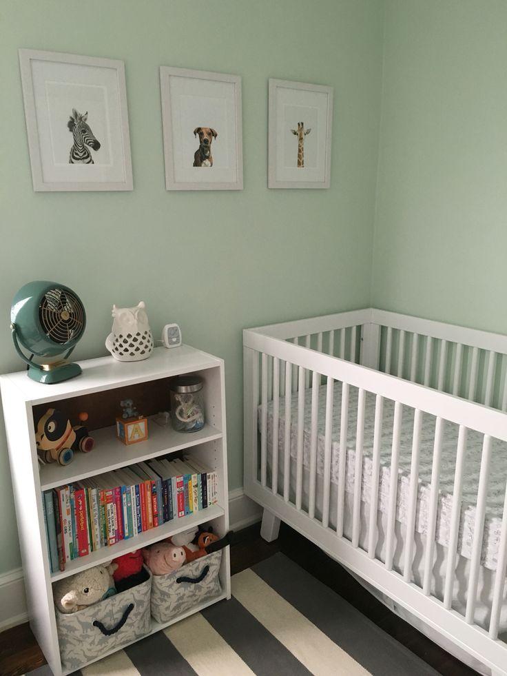 Best 25 Nursery Paint Colors Ideas On Pinterest Green