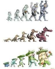 Afbeeldingsresultaat voor machamp mega evolution