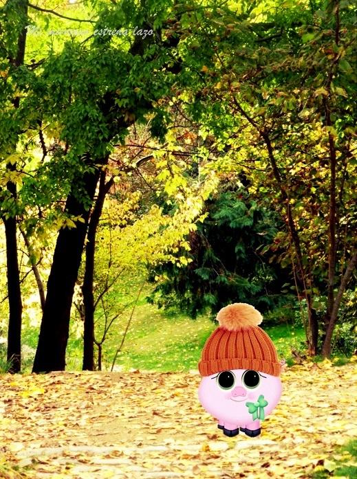 ...por el parque, pisando hojas.