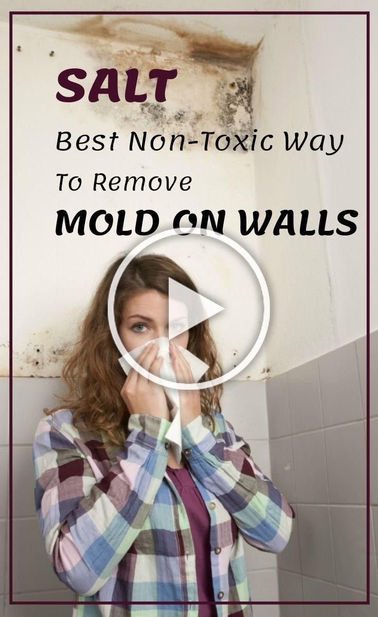 Salt Best Non Toxic Way To Remove Mold On Walls Cleaninginstructor Com In 2020 Woodworking Crafts Home Crafts Diy Crafts Videos