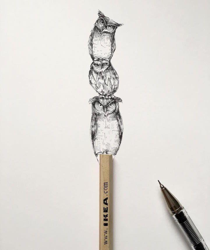 Les-dessins-de-nature-melee-de-Alfred-Basha-4