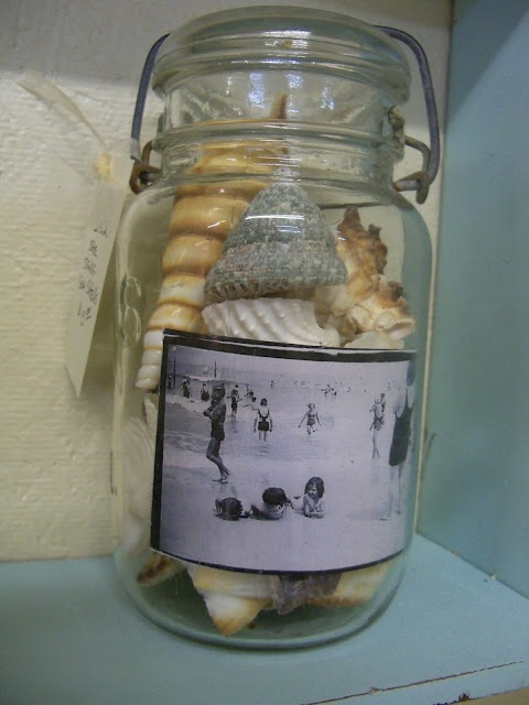 A fun way to display shells and old family beach pictures