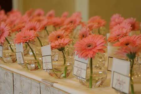 Decoração de Casamento Simples e Barata para Economizar