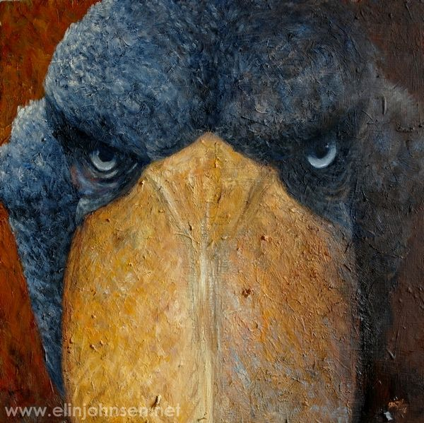 Shoebill (Balaeniceps rex). Oil on canvas 2016. Treskonebb. Olje på lerret. #painting #oilpainting #artwork #artforconservation #oiloncanvas #shoebill #endangered #endangeredspecies #angrybird #wildlife #wildlifeart #portrait #treskonebb #maleri #oljemaling #fugl #verdtåbevare #truetdyreart #oljepålerret #kunst