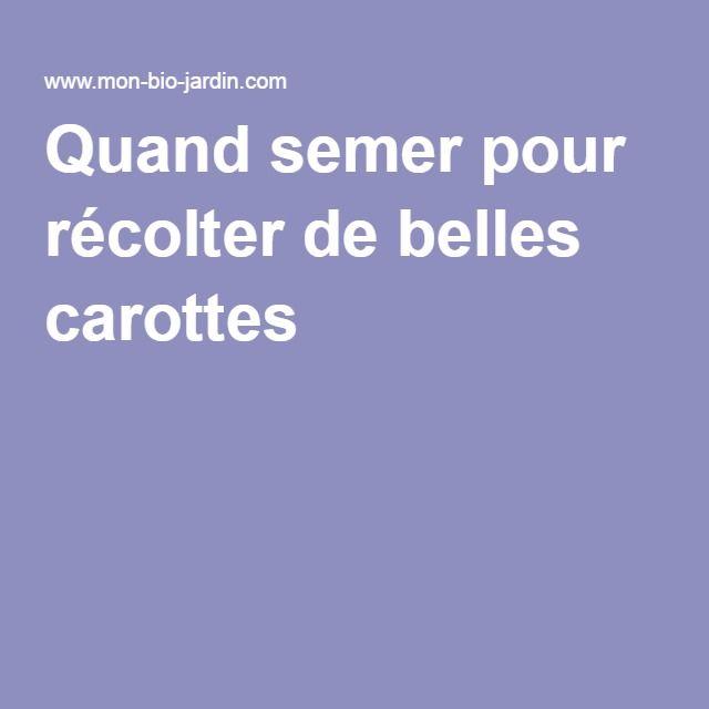25+ best semer des carottes ideas on pinterest   semis carotte
