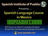 What to learn to Speak Spanish? Where to learn this language in Mexico? Visit here to get the perfect address.