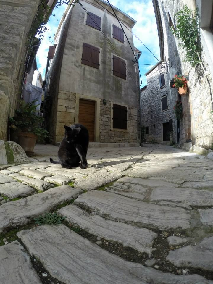 Cobbled medieval street of Bale, Istria, Croatia