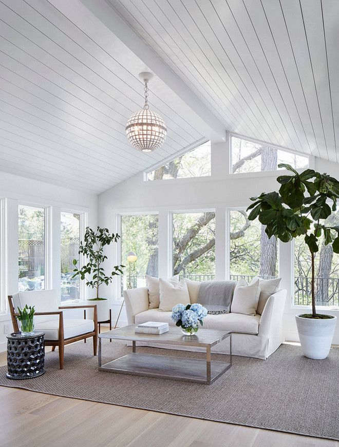 Shiplap Ceiling Living Room With Wood Paneled And