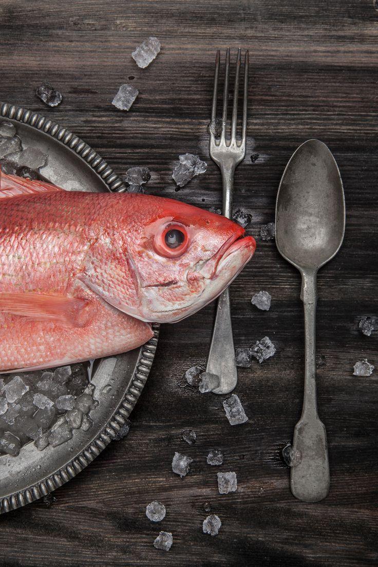 Food, foodphotography, fish, magalicancel, knife, spoon, ice, wood, plate, oldschool, freshfish, pink, grey, photography, montreal, studio, photoshoot