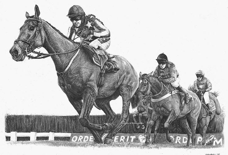 Imperial Commander at #Cheltenham. Prints are available! #horse #racehorse #racing #steeplechase #goldcup #pencil #drawing #art #equine #equestrian #horse