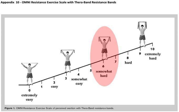 Circuito Yes : Efectos del entrenamiento funcional vs en