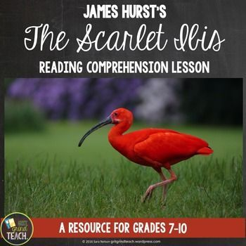 "Help your students understand the plot structure and characters in ""The Scarlet Ibis."" Perfect for a first read of the text."