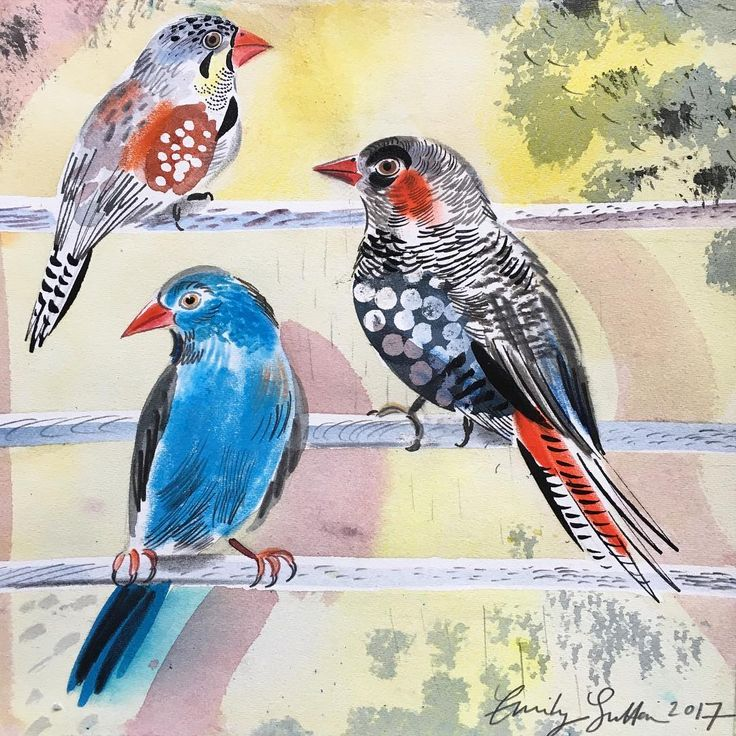 'Parisian Finches' by Emily Sutton, 2017