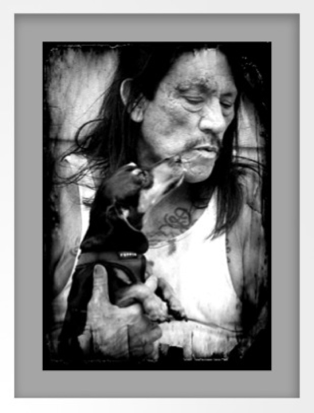 "M.    Danny Trejo and doxie.         Dan ""Danny"" Trejo is an American actor who has appeared in numerous Hollywood films, most notably in ""tough guy"" roles as a villain or an anti-hero"