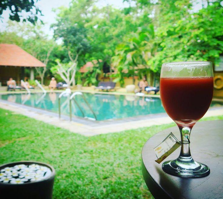 #スリランカ の #ネゴンボ ではジェットウィングスというホテルの#アユールベーダ のプログラムを3日強経験しました#マッサージ 以外に毎日先生の診察をうけ#健康 なコース料理3食と#ヨガ #水泳 街の #お散歩 とリラックスに忙しかった (笑) すっごくよかった In the city of #negombo #Srilanka we stayed at  #Jetwing #Ayurveda #hotel. #Having healthy meals  #Doctor consulting  #Yoga and #swimming beside awesome #massages everyday. yes we were a bit busy in #relaxing haha