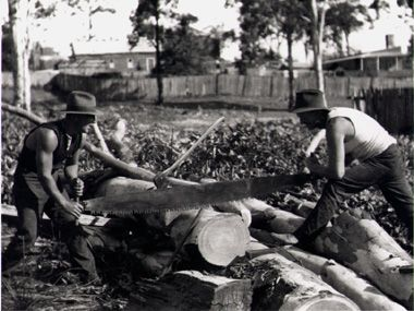 Clearing timber from Bank Street, Meadowbank, NSW in 1920.
