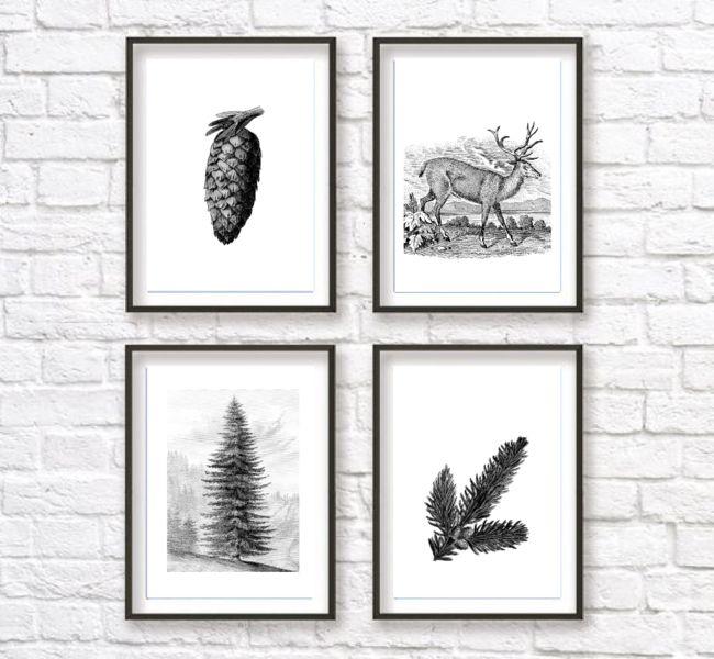 Plakaty szkice ilustracje vintage zimowe a4 - black-dot-studio - Wydruki i plakaty