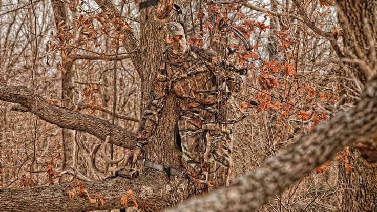pictures realtree download free