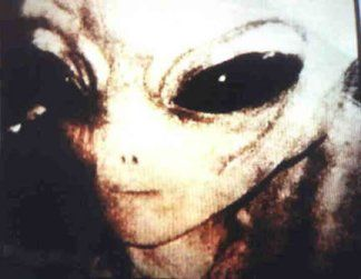 VARIOUS PHOTOS OF ALIENS AND EXTRATERRESTRIALS