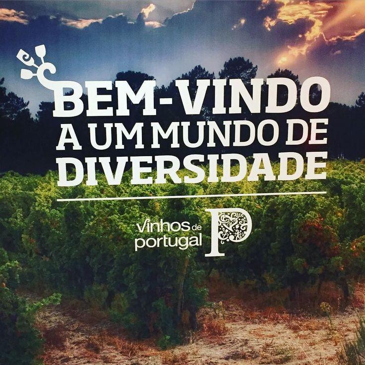 Prova ViniPortugal @DF #ppsimportadora #quintadovallado #vallado #wine #winelover #portugal #douro #vinho #dourovalley #instavinho #instawine #portugalnumagarrafa #reserva #porto #portwine #vintage #tinto #branco #rose #donamaria #alentejo #juliobastos #estremoz #donamariawines #vintage #tinto #branco #rose #redwine #vinhotinto #robertparker #winespectator #wine #winelover #portugal #vinho #instavinho #instawine #portugalnumagarrafa #reserva by pps_importadora
