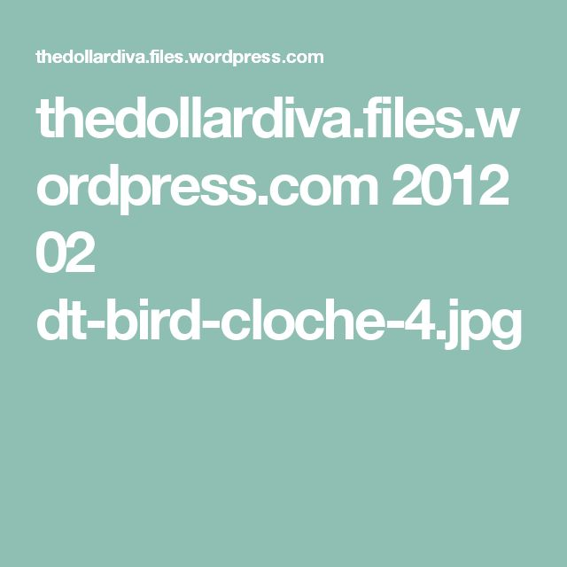 thedollardiva.files.wordpress.com 2012 02 dt-bird-cloche-4.jpg