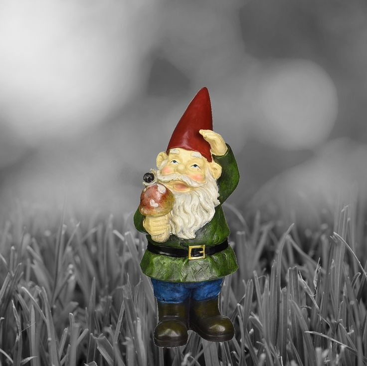 Garden Gnomes On Sale: 8 Best Funny Gnomes Collection Images On Pinterest