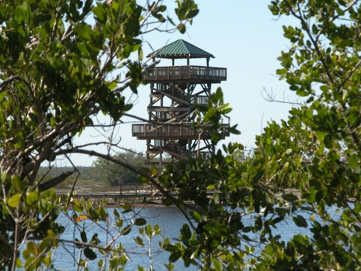 Robinson Preserve's observation tower is a great place for a view of the vast nature preserve and the beauty of the inter-coastal waterways of Bradenton Florida