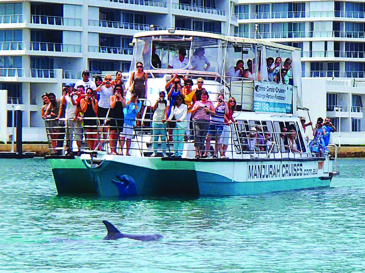 Some happy guests getting a close look at on of Mandurah's dolphins. #dolphin #watching #cruise