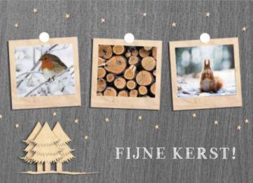 Sfeervolle kerstkaart met foto's van dieren en natuur in ouderwetse polaroids.