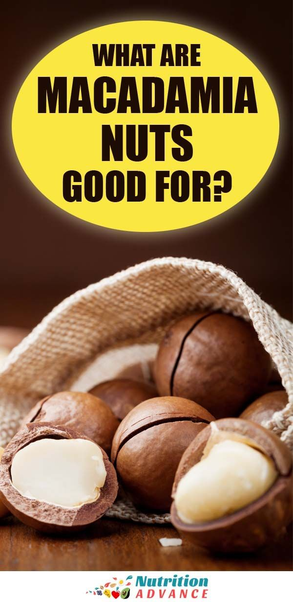 Are Macadamia Nuts Good For You Macadamia Nuts Macadamia Nuts Nutrition Macadamia