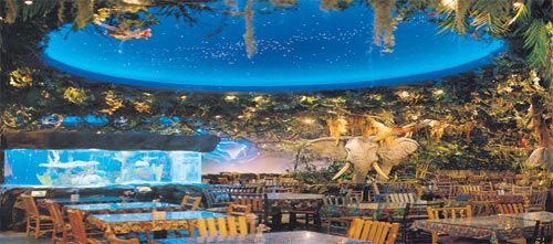 The Rainforest Cafe is located on the Falls Avenue Entertainment Complex directly across from the Falls. This Niagara Falls restaurant offers guests a menu to suit every taste featuring family favourites including salads, burgers, pastas and signature sandwiches. Customer service is a priority at the Rainforest Cafe, you will receive exceptional guest service from the moment of your arrival in the jungle to your departure and all points in between.