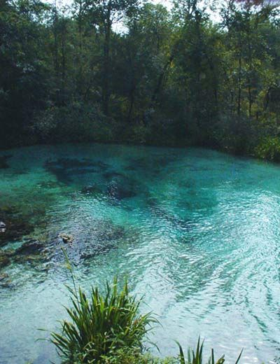 Ichetucknee River and Springs in Florida State Park | This is the premier spot for tubing and exploring one of the clearest rivers in Florida.. Ichetucknee Springs offers a 3-hour and 1.5-hour tube run down the Ichetucknee River.  This is virtual paradise!  It is a very relaxing ride down a beautiful landscape with crystal clear water.