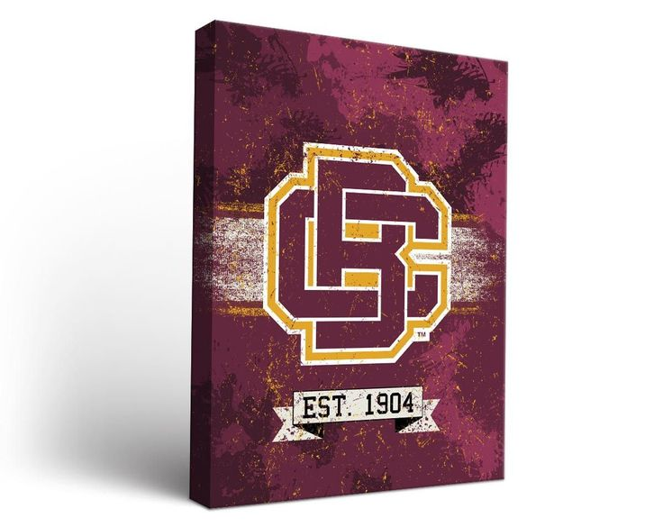 Bethune-Cookman Wildcats Classic Canvas Wall Art Rectangle