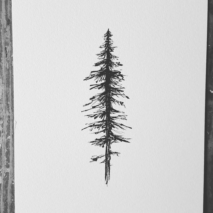 Little pine-tree  because I messed up the other illustration (will post it on the story soon). Wish you all a fantastic weekend  . . . . My shop with prints and originals. Link in bio @lostswissmiss http://ift.tt/2jfRKg7 . . .  #illustration #illustrations #drawing #draw #sketchbook #artwork #artworks #instaart #instaartist #traditionalart #artoftheday #artsy #handdrawn #illustrate #kunst #artdiscover #artistofinstagram #inkstagram #swissartist #mountains #landscape #blackworknow…