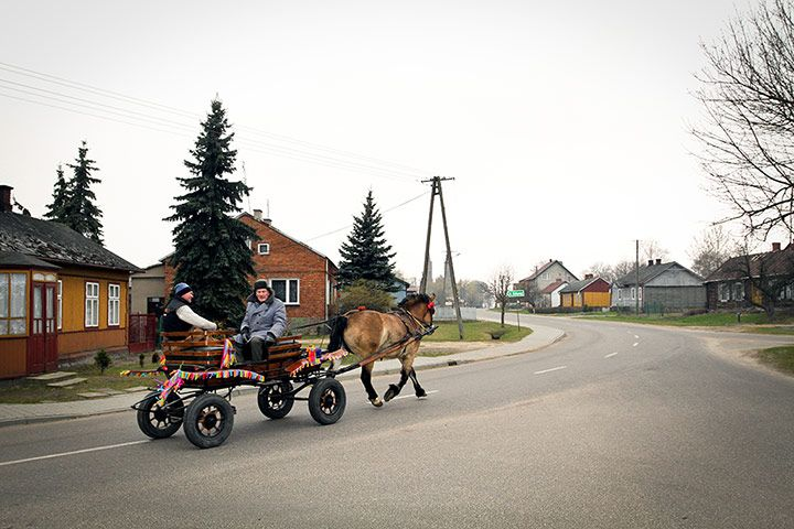 A rare view even in rural central Poland - a traditional cart, decorated for the holidays, runs through a quiet village / photo: Daniela Miernik