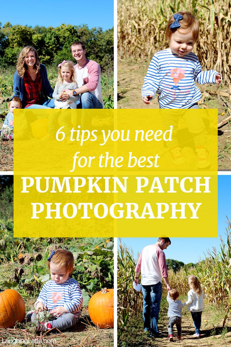 Pumpkin Patch Photography! 6 tips for the best pumpkin patch photos of your kids!