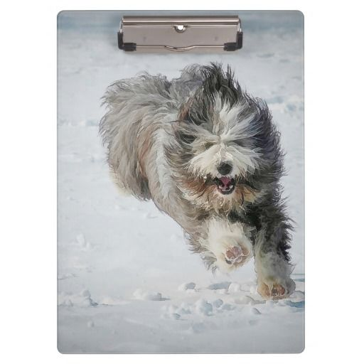 Bearded collie running in the snow. Clipboard for your office, home or school. This high quality acrylic clipboard is made to hold your letter and A4 documents securely with a strong low profile clip and rubber grips