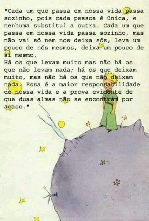 Pequeno Príncipe Livros Frases Quotes E The Little Prince